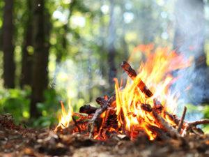 Best Fire Starter Tool